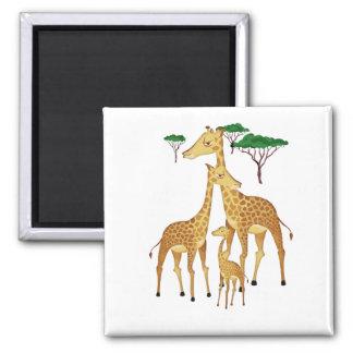 Giraffe Family with Acacia Trees Magnet