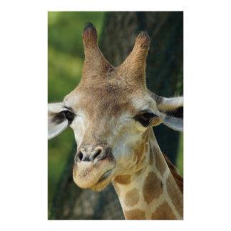 Giraffe Flyer