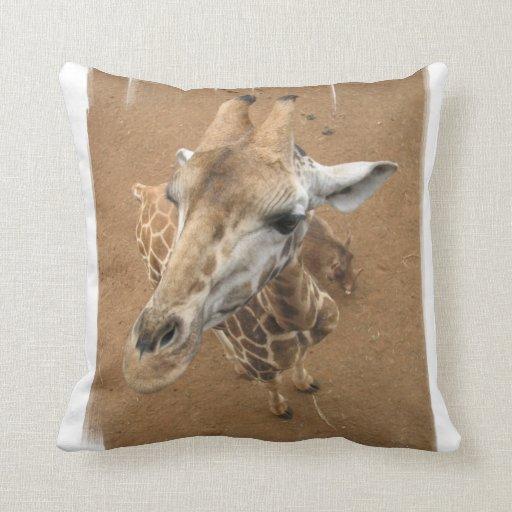 Giraffe Gaze Pillow