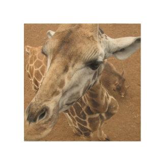Giraffe Gaze Wood Wall Art