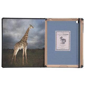 Giraffe (Giraffa camelopardalis) Cover For iPad