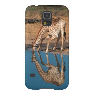 Giraffe (Giraffa Camelopardalis) Drinking Galaxy S5 Covers
