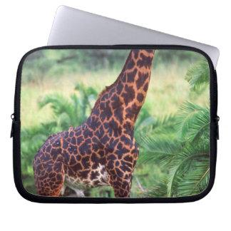 Giraffe, Giraffa camelopardalis, Tanzania Africa 2 Computer Sleeve