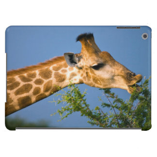 Giraffe (Giraffe Camelopardalis) Feeding Case For iPad Air
