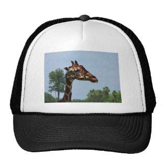 Giraffe head against blue sky photograph picture trucker hat