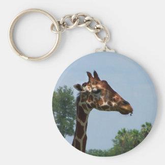 Giraffe head against blue sky photograph picture keychain