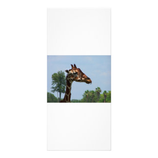 Giraffe head against blue sky photograph picture rack card