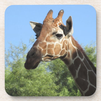 Giraffe Head Coasters