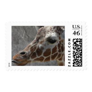giraffe head postage