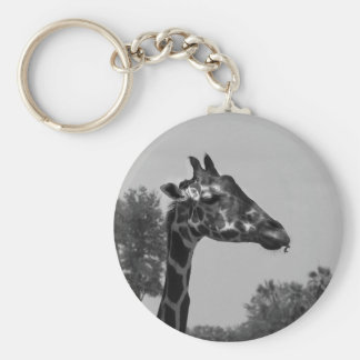 Giraffe head with plants and sky photograph keychains