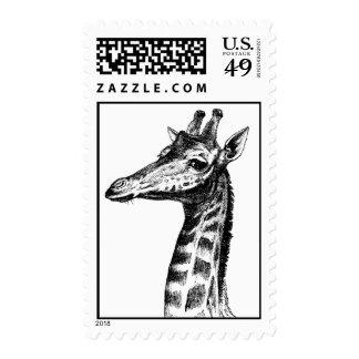 Giraffe Illustration Stamps