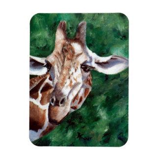 Giraffe I'm Up Here Rectangular Magnet
