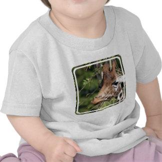 Giraffe Images Baby T-Shirt