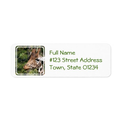 Giraffe Images Mailing Label