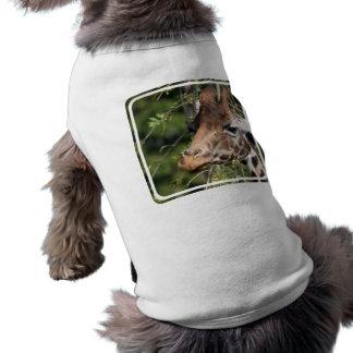 Giraffe Images Pet Shirt