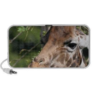 Giraffe Images Speakers