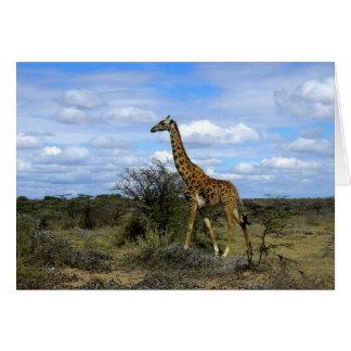 GIRAFFE IN KENYA AFRICA CARD