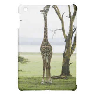 Giraffe in Kenya, Africa iPad Mini Cover