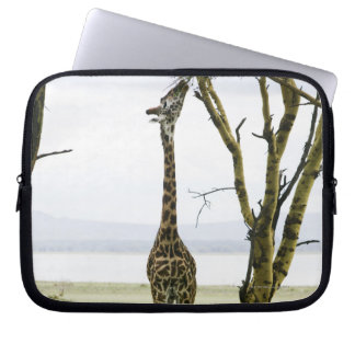 Giraffe in Kenya, Africa Laptop Sleeve