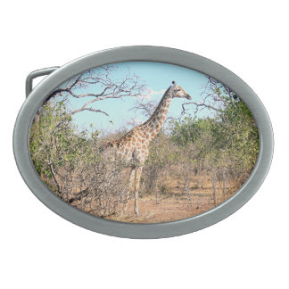 """GIRAFFE IN NATURAL HABITAT"" BELT BUCKLE"