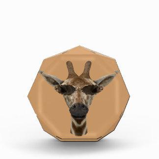Giraffe Incognito Acrylic Award
