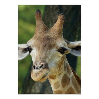 Giraffe 3.5x5 Paper Invitation Card