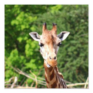 Giraffe 5.25x5.25 Square Paper Invitation Card