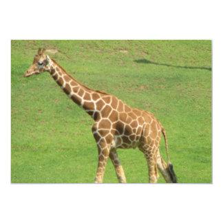"""Giraffe Invitation 5"""" X 7"""" Invitation Card"""