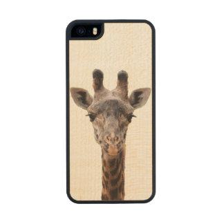 Giraffe iPhone 5/5S case Carved® Maple iPhone 5 Case