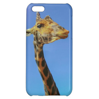 Giraffe iPhone 5C Cover