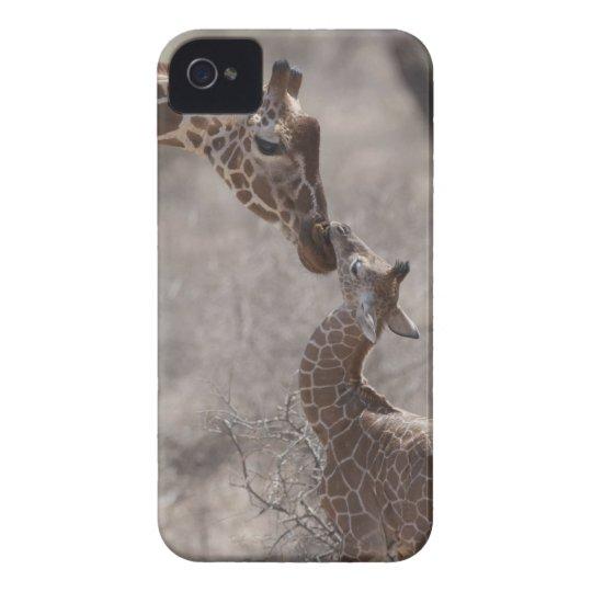 Giraffe, Kenya, Africa iPhone 4 Cover