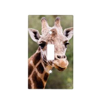 Giraffe light switch cover