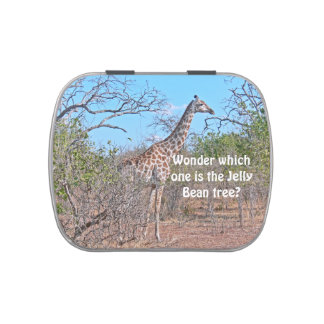 """""""GIRAFFE LOOKING FOR JELLY BEAN TREE"""" (PHOTOG) CANDY TINS"""