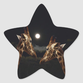 Giraffe Love In The Moonlight, Star Sticker