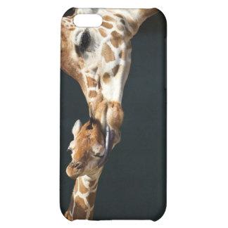 Giraffe Love iPhone 5C Covers