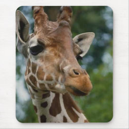 Giraffe Lovers Art Gifts Mouse Pad