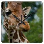 Giraffe Lovers Art Gifts Wallclock