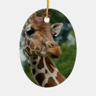 Giraffe Lovers Christmas Ornament