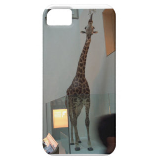 Giraffe, luckier than Marius; model 3 iPhone SE/5/5s Case