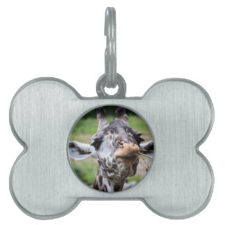 Giraffe Lunch Pet ID Tag