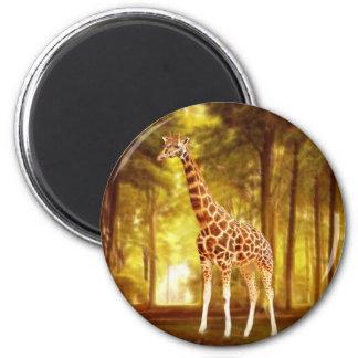 Giraffe 2 Inch Round Magnet