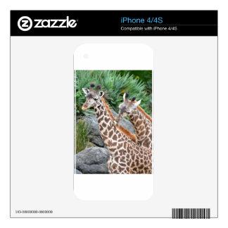Giraffe Massage Skin For The iPhone 4S