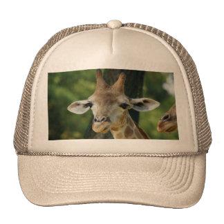 Giraffe Mesh Hats