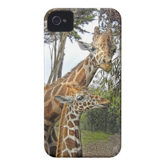 Giraffe Mom and Baby iPhone 4 Covers