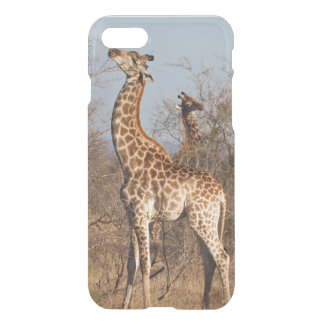 Giraffe Morning Snack iPhone 8/7 Case