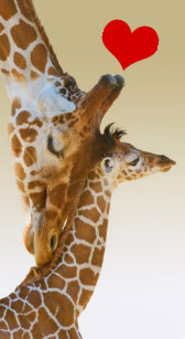 Mother And Baby Giraffe Electronics Tech Accessories Zazzle