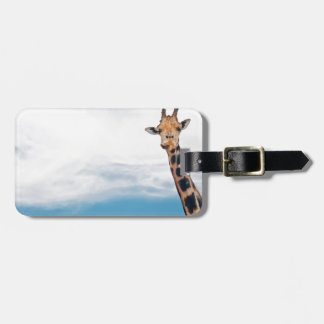 Giraffe neck and head against the clear blue sky luggage tag