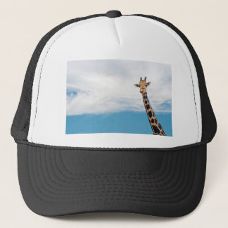 Giraffe neck and head against the clear blue sky trucker hat
