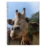 Giraffe Note Books