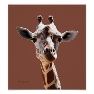 Giraffe on Brown Poster